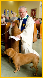 Fr Heyward and dogs