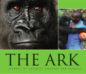The Ark issue 227